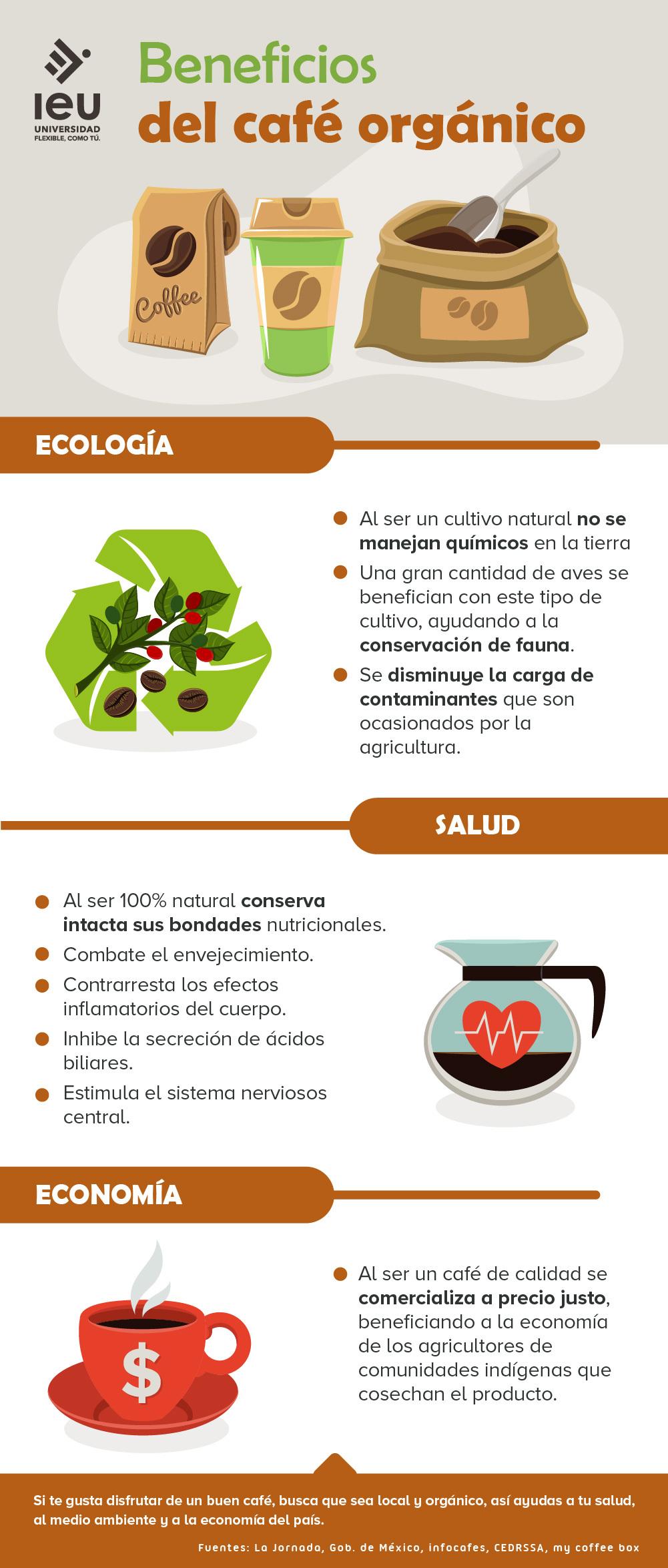 Beneficios Del Café Orgánico Infografia