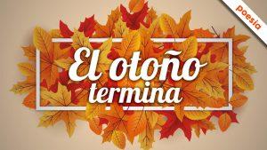columna rino el otoño termina