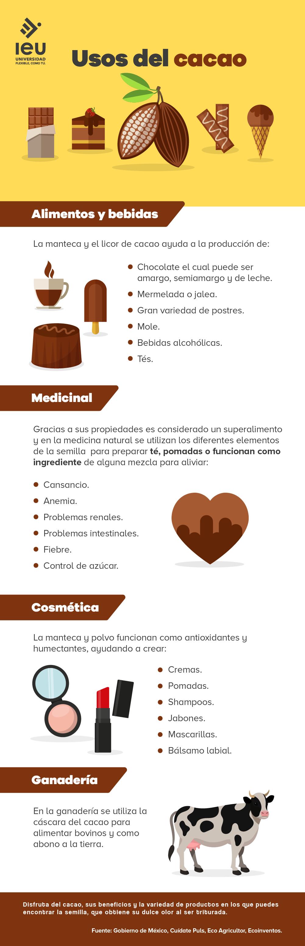 usos del cacao infografia